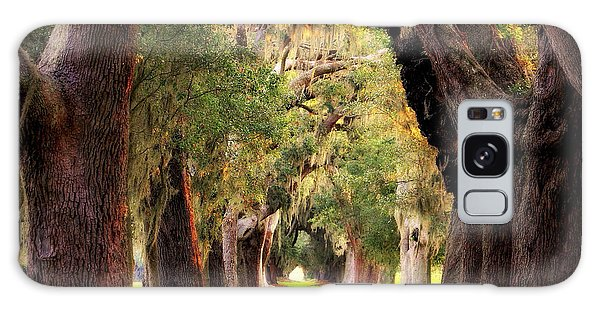 Avenue Of Oaks Sea Island Golf Club St Simons Island Georgia Art Galaxy Case