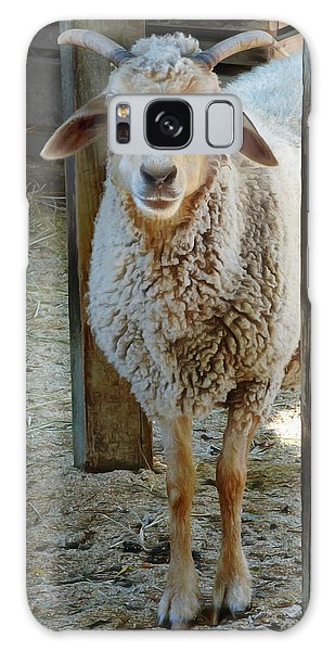 Awassi Sheep Galaxy Case