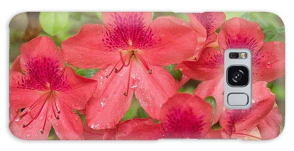 Azalea Blossoms Galaxy Case