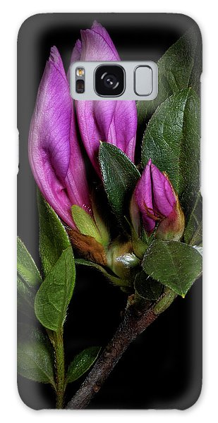 Azalea Buds Galaxy Case by Richard Rizzo
