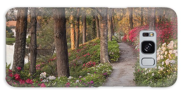 Azalea Hill Path Galaxy Case