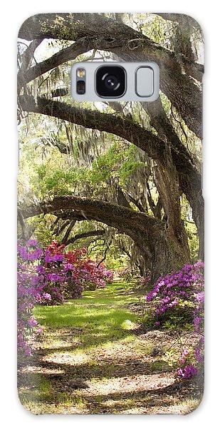 Azaleas And Live Oaks At Magnolia Plantation Gardens Galaxy Case