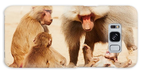 Baboon Family Having Fun In The Desert Galaxy Case