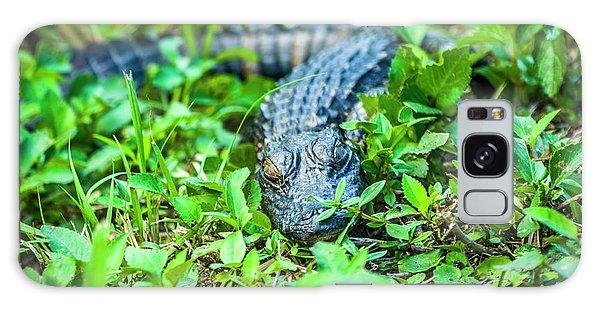 Baby Alligator Galaxy Case