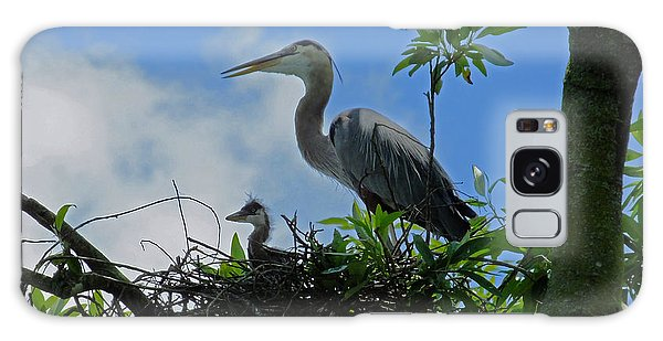 Baby And Mom Great Blue Heron Galaxy Case