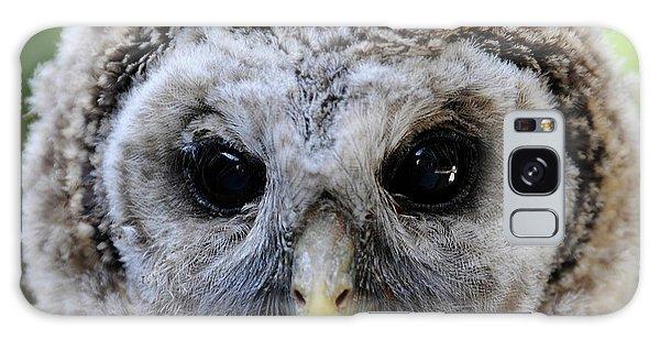 Baby Barred Owl-2 Galaxy Case