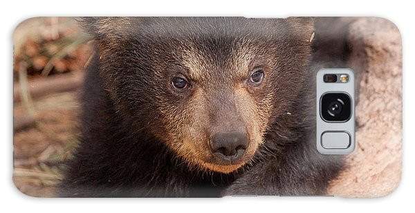 Baby Bear Portrait Galaxy Case by Laurinda Bowling