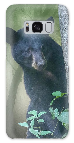 Baby Bear Takes A Peek Galaxy Case
