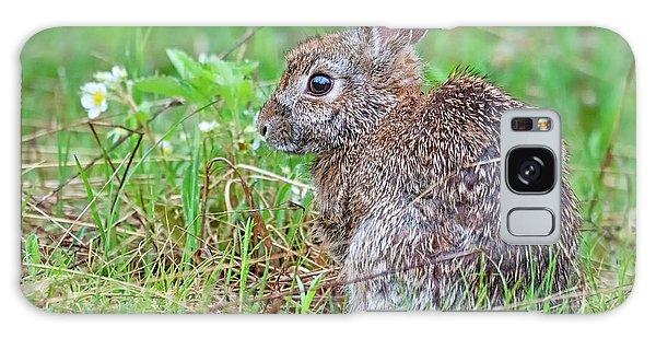 Baby Bunny Galaxy Case