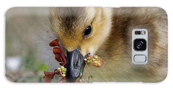Baby Chick With Water Flowers Galaxy Case