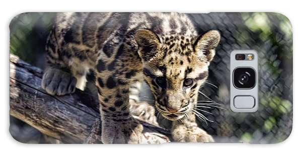 Baby Clouded Leopard Galaxy Case