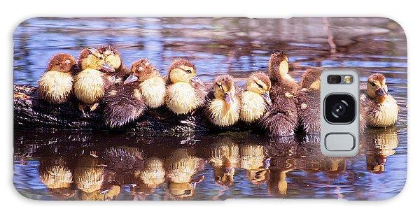 Baby Ducks On A Log Galaxy Case