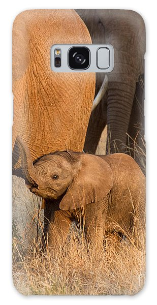 Baby Elephant 2 Galaxy Case