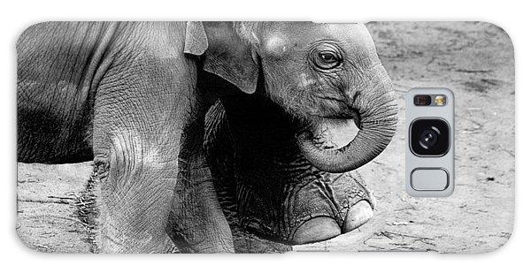 Baby Elephant Security Galaxy Case