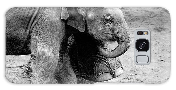 Baby Elephant Security Galaxy Case