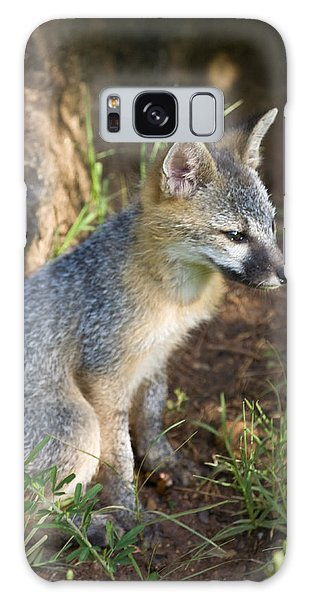 Baby Gray Fox Resting On Bluff Side Galaxy Case