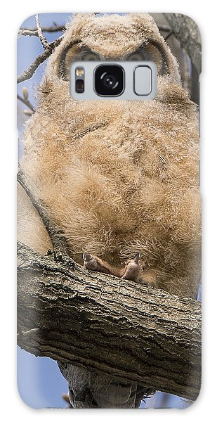 Baby Great Horned Owl Galaxy Case