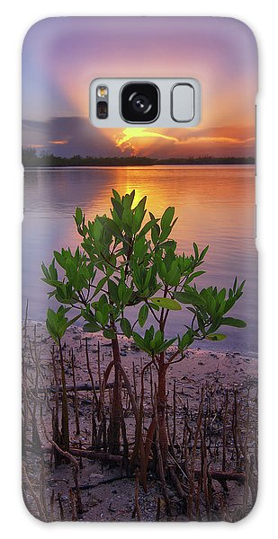 Baby Mangrove Sunset At Indian River State Park Galaxy Case by Justin Kelefas
