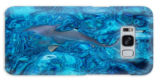 Baby Shark In The Turquoise Water. Production By Nature Galaxy Case