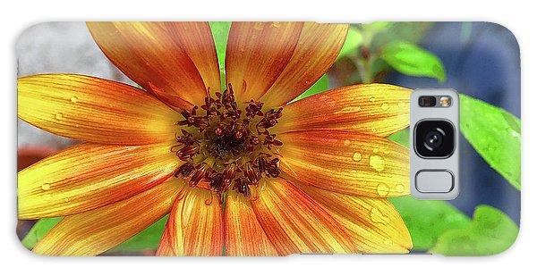 Baby Sunflower Grace Galaxy Case