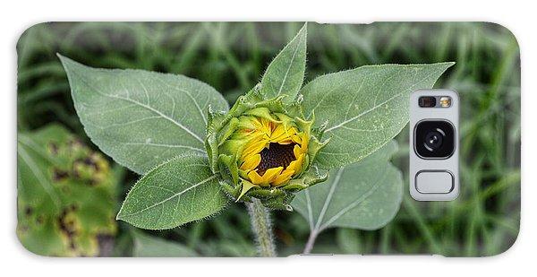 Baby Sunflower  Galaxy Case
