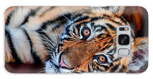 Baby Tiger Galaxy Case