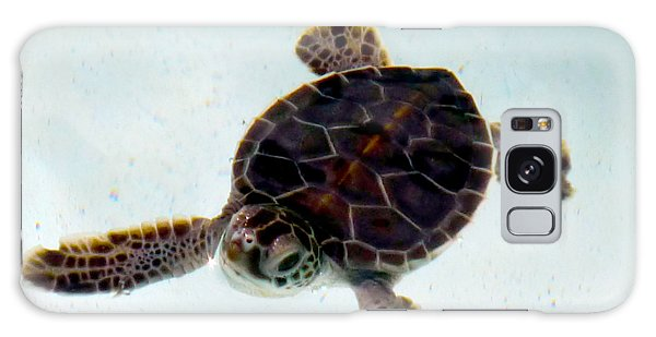 Galaxy Case featuring the photograph Baby Turtle by Francesca Mackenney