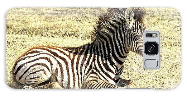 Baby Zebra Galaxy Case