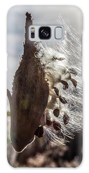 Back Lit Milkweed Pod Galaxy Case