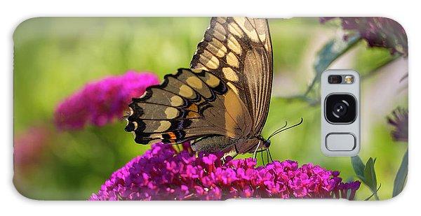 Back-lit Papilio Galaxy Case