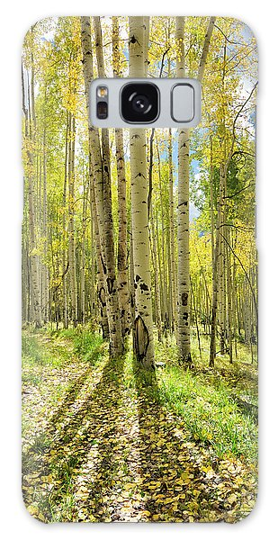 Backlit Aspen Trail Galaxy Case