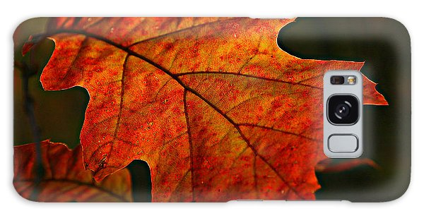 Backlit Leaf Galaxy Case by Shari Jardina