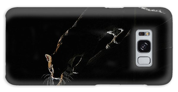 Backlit Ocelot Galaxy Case by Wade Aiken
