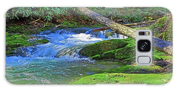 Backwoods Stream Galaxy Case