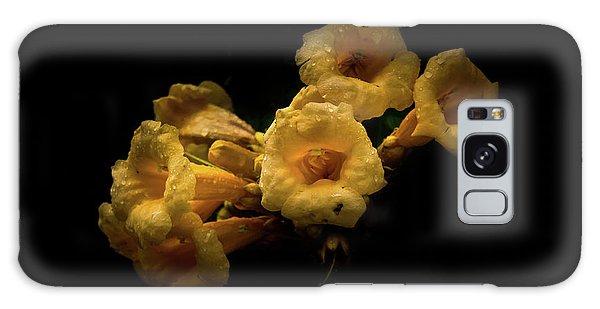 Backyard Flowers 63 Color Version Galaxy Case