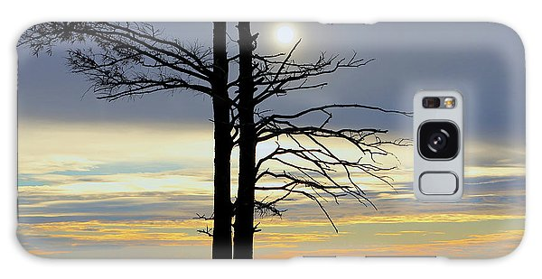 Bald Cypress Silhouette Galaxy Case