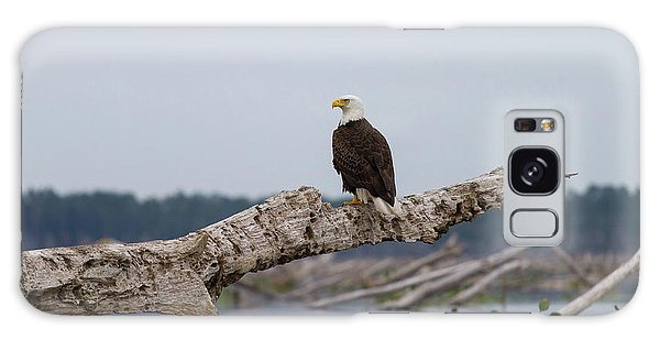 Bald Eagle #1 Galaxy Case