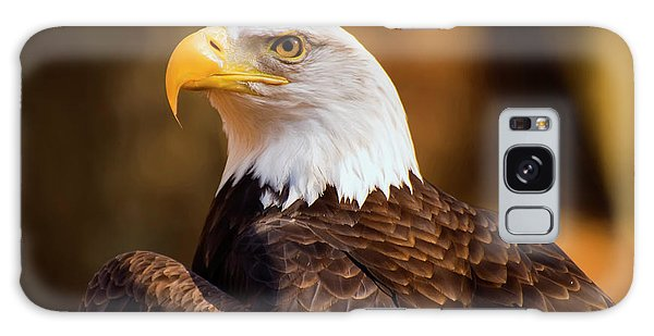 Bald Eagle 2 Galaxy Case