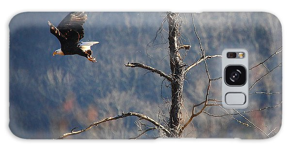 Bald Eagle At Boxley Mill Pond Galaxy Case