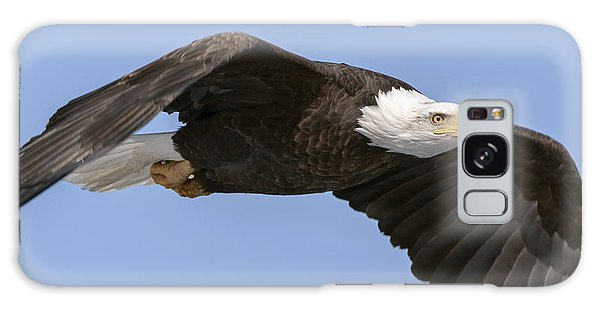 Bald Eagle Flight 2 Galaxy Case