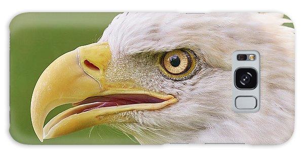 Bald Eagle In Profile Galaxy Case