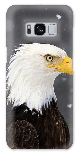 Bald Eagle Intensity Galaxy Case