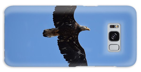 Bald Eagle Juvenile Soaring Galaxy Case