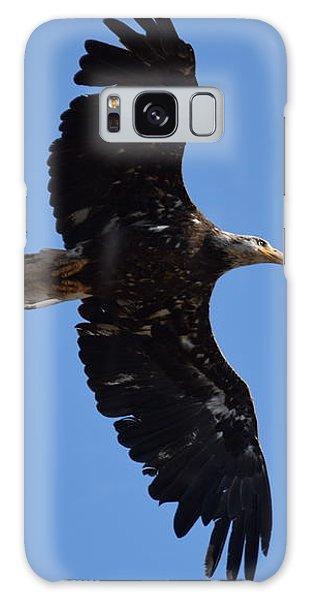 Bald Eagle Juvenile Soaring Galaxy Case