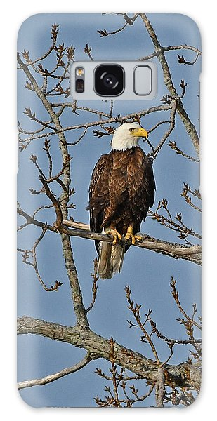 Galaxy Case featuring the photograph Bald Eagle by Ken Stampfer