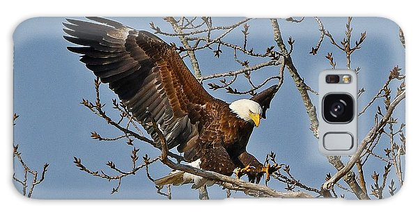 Galaxy Case featuring the photograph Bald Eagle Landing by Ken Stampfer