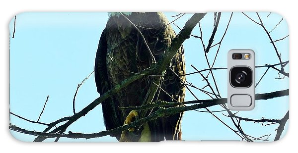 Bald Eagle Over The Root River Galaxy Case