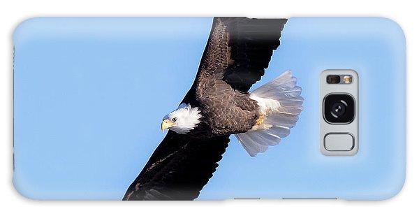 Bald Eagle Overhead  Galaxy Case