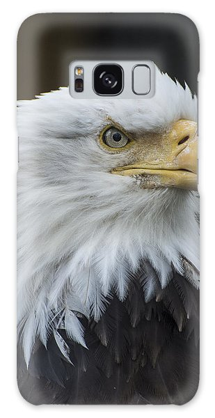 Bald Eagle Portrait Galaxy Case by Gary Lengyel
