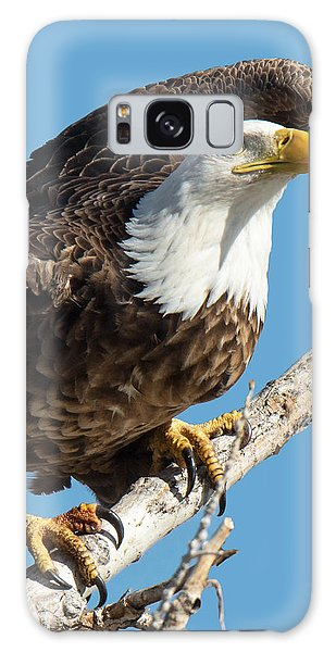 Bald Eagle Ready To Launch Galaxy Case by Stephen  Johnson